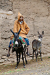 A boy on a donkey with a foal standing next to them, Essaouira, Morocco