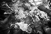 Ramgarh 25.02.2010 India. Leprosy colony. This is the place where works sister Stefania from Poland. Preparation for weeding..Photo Maciej Jeziorek/Napo Images..Ramgarh 25.02.2010 Indie .Kolonia dla tredowatych, w ktorej pracuje pochodzaca z Polski siostra Stefania. Przygotowania do wesela w kolonii.fot. Maciej Jeziorek/Napo Images