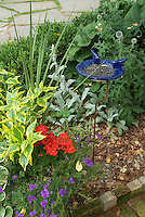 Ceramic blue bird feeder with sunflower seeds in garden of flowers, perennials and shrubs