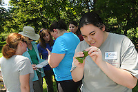NWA Democrat-Gazette/FLIP PUTTHOFF <br /> Anna Elise Hellier (right) looks at aquatic insects       July 2016        on a leaf plucked from Prairie Creek below Lake Atalant Dam in Rogers. Study at the stream is part of volunteer training for the Stream Smart program that monitors water quality in creeks and rivers.