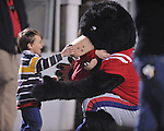 A fan greets Rebel the Bear mascot at Ole Miss vs. Louisiana Tech in Oxford, Miss. on Saturday, November 12, 2011.