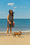 Sands Point, New York, U.S. - July 5, 2014 - Young woman is walking her chihuahua on leash along sandy shoreline at Sands Point Preserve on the North Shore Gold Coast on Long Island Sound. The public beach had many visitors this Saturday of Independence Day Weekend when sunny warm weather arrived after the rainy July 4th.