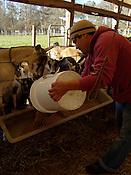 Celebrity Dairy.Rudi Arnoldo Figueroa Velaquez