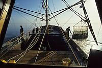 Europe/Pays-Bas/Hollande/Yerseke : Le port myticole de Yerseke - Dragues servant à remonter les moules