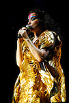 Bjork performing at the Austin City Limits Music Festival in Austin Texas on September 14, 2007.