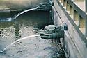 Fountain at Chi Lin Nunnery, Buddist temple.<br /> Hong Kong