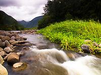The Waipi'o Valley and its river, Hamakua, Big Island.