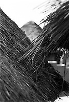 IPLM0011 , South Africa, Venda, June 2001. Thatched roof of Venda huts.