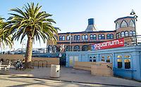 Santa Monica Pier Aquarium, Thursday, June 5, 2014.