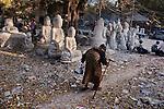 _SM20226, Myanmar/Burma, BURMA-10486