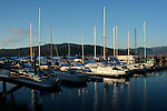 Sailboats of all sizes reflected in the waters at the Coeur D Alene marina at dawn