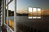Reflecion in window