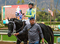 ARCADIA, CA  FEBRUARY 4: #11 Isotherm, ridden by Flavien Prat,  return to the winners circle after winning the San Marcos Stakes (Grade ll) on February 4, 2017, at Santa Anita Park in Arcadia, CA.  (Photo by Casey Phillips/Eclipse Sportswire/Getty Images)