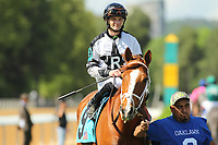 HOT SPRINGS, AR - APRIL 15: Apprehender #9, with jockey Alex Birzer before the Count Fleet Sprint Handicap at Oaklawn Park on April 15, 2017 in Hot Springs, Arkansas. (Photo by Justin Manning/Eclipse Sportswire/Getty Images)