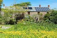 Solar Panels and rooftop heat exchanger for hot water on a period property at West Tosberry, Devon, Southern England, UK