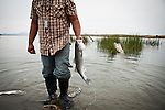 Pisey Ngien catches a striper just south of Rio Vista, Calif., June 3, 2011