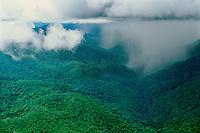 Aerial of tropical rainstorm showing rainshaft at base of cumulonimbus cloud in Guiana Highlands, Amazonas State, Venezuela.