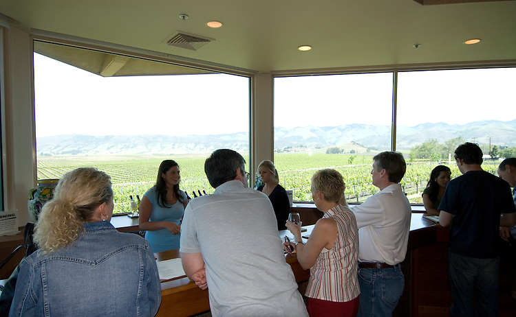 California, San Luis Obispo County: Wine country, Edna Valley Vineyard, tasting room..Photo caluis115-71012..Photo copyright Lee Foster, www.fostertravel.com, 510-549-2202, lee@fostertravel.com