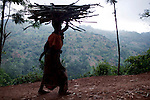 AMANI NATURE RESERVE, TANZANIA - NOVEMBER 13: A woman walks with firewood forest at dusk on November 13, 2009 in Amani Nature Reserve, Tanzania. Locals have worked since 2004 to preserve this unique rainforest together with Tanzania Forest Conservation Group. The main purpose has been to preserve the rich biological life in the forest and to stop illegal logging and the cutting of trees by villagers for firewood. Many villagers has started income generating programs such as bee keeping, butterfly farms and different spices. Many women have especially been empowered by these projects. (Photo by Per-Anders Pettersson)...
