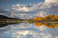 Fall Colors reflected in the waters of the Oxbow Bend in Grand Teton National Park