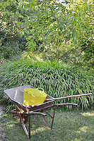 A plastic bucket sits in a wheel-barrow, which stands on the lawn against a backdrop of green foliage.