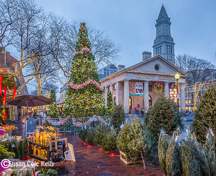 Christmas lights at Quincy Market and the Custom House tower in Faneuil Hall Marketplace, Boston, Massachusetts, USA