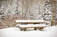 snow covered picnic table in the Santa Fe Mountains of New Mexico