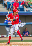 3 March 2016: Washington Nationals outfielder Reed Johnson in action during a Spring Training pre-season game against the New York Mets at Space Coast Stadium in Viera, Florida. The Nationals defeated the Mets 9-4 in Grapefruit League play. Mandatory Credit: Ed Wolfstein Photo *** RAW (NEF) Image File Available ***