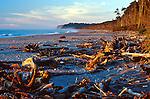 Bruce Bay, South Island, West Coast