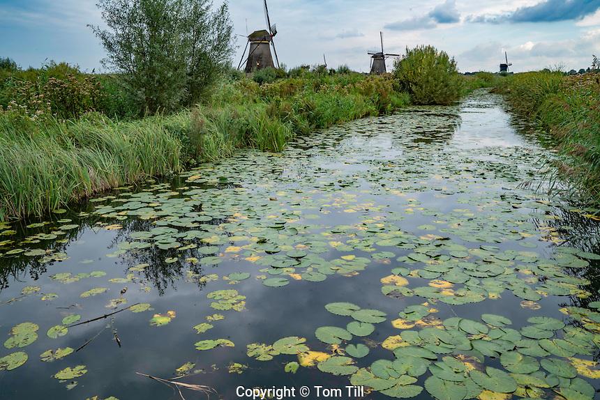 Windmills at Kinderdiijk, Netherlands, Holland  Oldest Dutch windmills built around 1740, UNESCO World Heritage Site