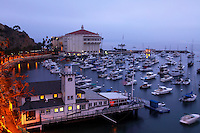 Catalina Island Stock Photos