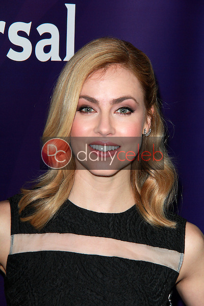 Amanda Schull<br />