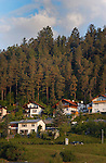 Alpine homes with background of evergreen trees in the spring. Imst district, Tyrol/Tirol. Austria.
