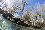 Back Pool, Three Sisters Spring