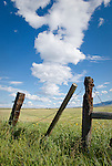 Fence guards hay and pasture in the Wet Valley.