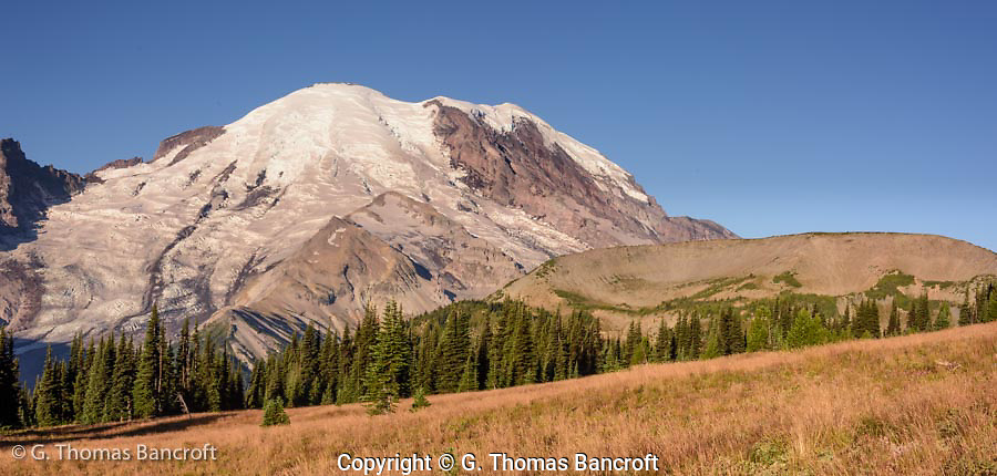 Mt Rainier just up the trail toward Sourdough Ridge from Sunrise. First Burroughs Mountain is on the right. Burroughs Mountain and Sourdough Ridge are remenants of andesite lava flows between 420,000 and 500,000 years ago when Mt Rainier was just begining to grow.