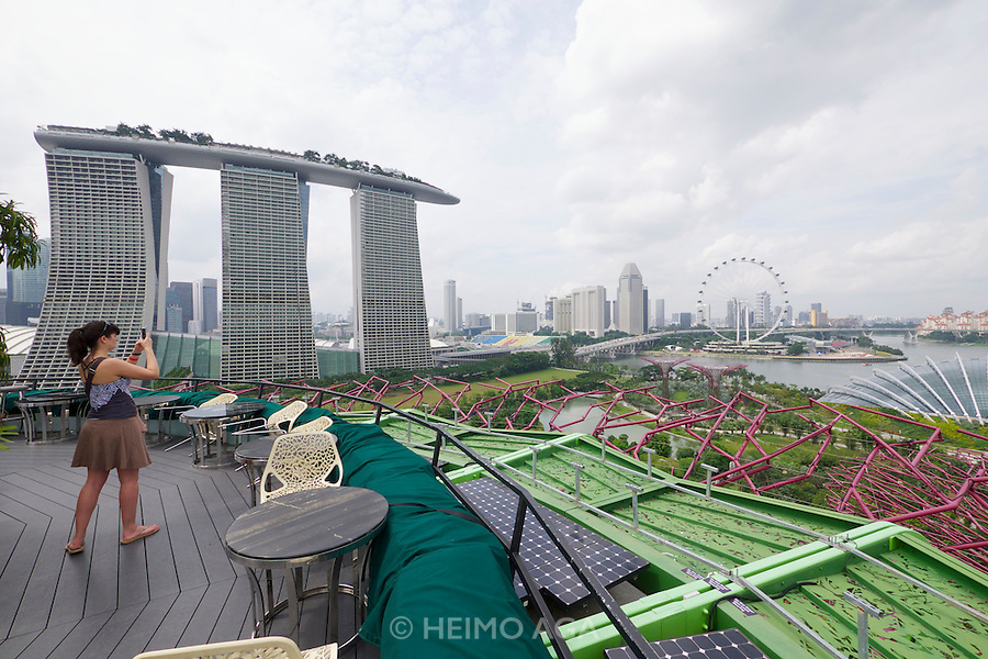 Singapore. Marina Bay Sands Hotel. Gardens by the Bay, View from Supertree Dining.
