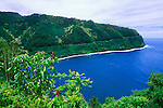 The Hana Highway and coastline above Honomanu Bay, Island of Maui, Hawaii