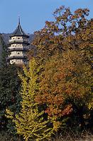 Asie/Chine/Jiangsu/Nankin&nbsp;: Monast&egrave;re de la Vall&eacute;e d'Esprit - La pagode<br /> PHOTO D'ARCHIVES // ARCHIVAL IMAGES<br /> CHINE 1990