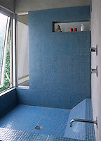 A wet room decorated with blue mosaic tiles