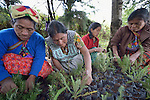 Hilda Coronado (second from left) trains agricultural promoters at an eco-agricultural training center in Comitancillo, Guatemala. The center is sponsored by the Maya Mam Association for Investigation and Development (AMMID).