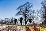 Seawell Valley Shoot  15th January 2016