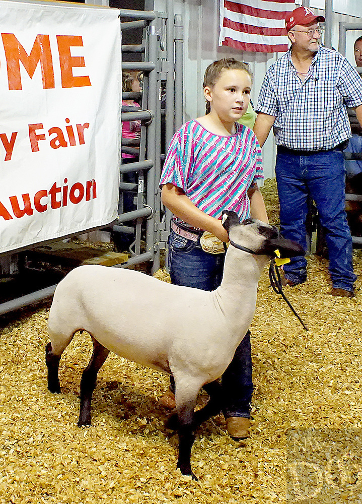 Hailey Harris<br /> Town and Country 4-H