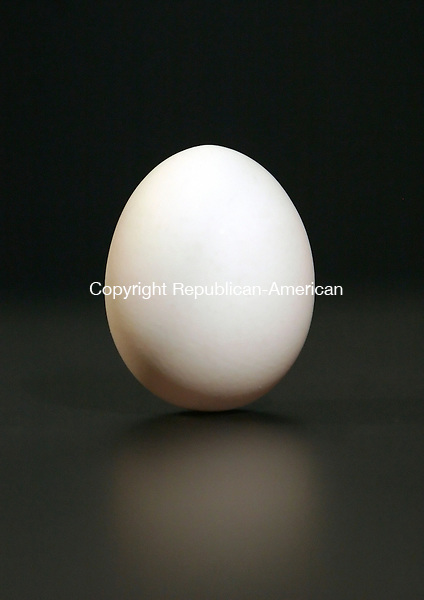 WATERBURY, CT 03/19/08- 031908BZ01- An egg stands on end in the photo studio of the Republican-American Wednesday afternoon.<br /> Jamison C. Bazinet Republican-American