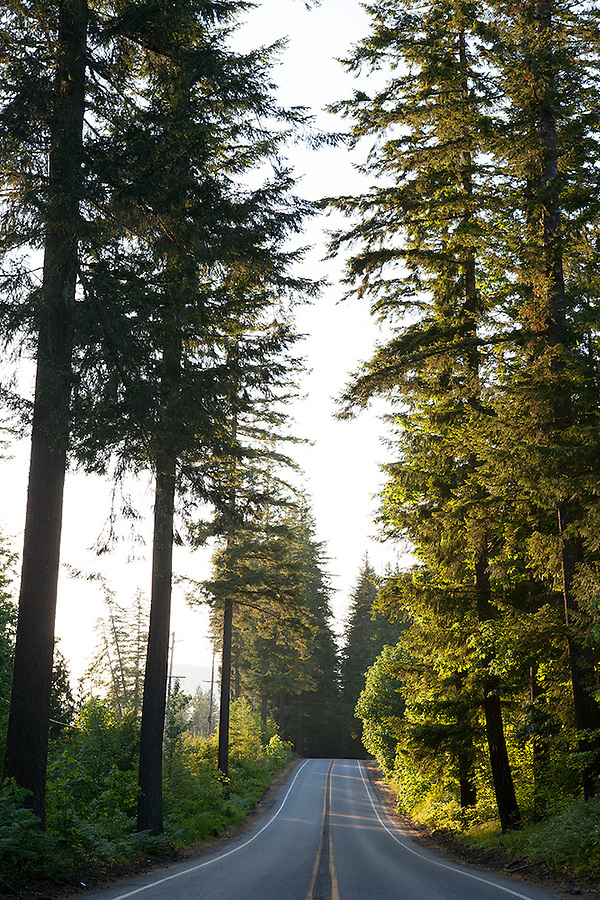 The road to North Cascades National Park, Washington State, WA, USA