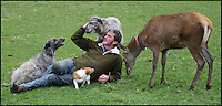 BNPS.co.uk (01202 558833)<br /> Pic: DavidFitzgerald/BNPS<br /> <br /> Kenny with roe deer Yanna, his two Irish wolfhound-deerhound cross' Murphy and Hennessy, and his Jack Russell.<br /> <br /> Supplying farm animals to TV and film crews, including the huge hit series Game of Thrones, has saved Kenny Gracey's bacon.<br /> <br /> The 57-year-old farmer started supplying pigs, cows, donkeys, goats and even a trained deer to Hollywood seven years ago, when the recession was hitting his business hard.<br /> <br /> Mr Gracey said the film work his animals get has helped him pay the bills and keep his business going.<br /> <br /> Forthill Farm in Tandragee, Northern Ireland, specialises in traditional breeds like Longhorn cattle and Gloucestershire old spot pigs, ideal for shows and films set in medieval times.