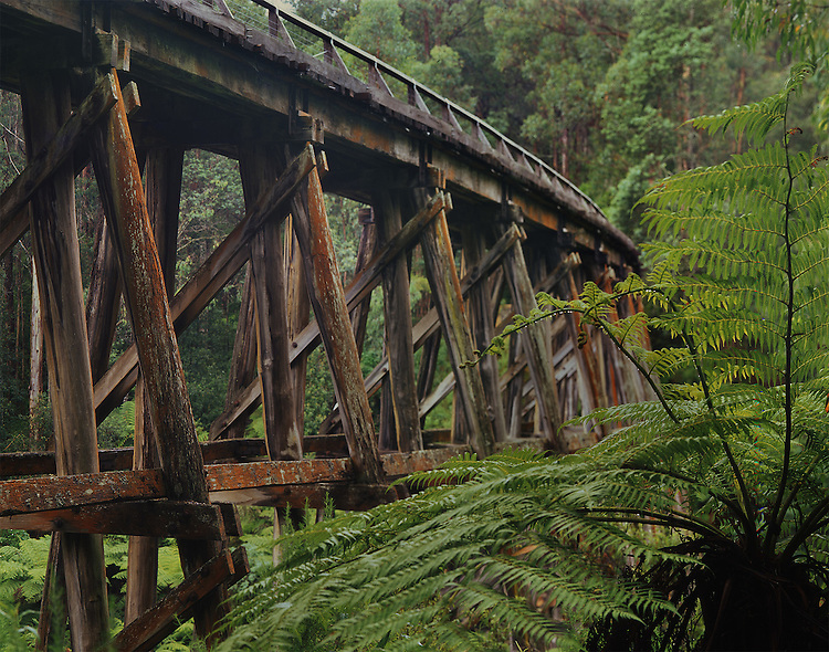 Noojee Trestle Bridge