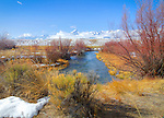 Idaho, Eastern, Leadore, Birch Creek Valley. Birch Creek and the Lemhi Mountains in early spring.
