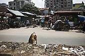 Dhaka 13-16 May 2013 Bangladesh<br /><br />(Photo by Filip Cwik / Napo Images)<br /><br />Dhaka 13-16 maj 2013 Bangladesz<br />Dzielnica biedy Mirpur 14 z kt&mdash;rej najczesciej pochodza pracownicy fabryk odziezowych <br />(fot. Filip Cwik / Napo Images)