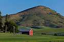 WA09647-00...WASHINGTON - Steptoe Butte and barn in the Palouse area of Whitman County.